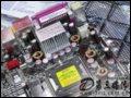 [大�D6]�A�TP5WD2 Premium主板