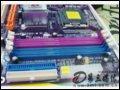 [大�D5]精英P4M800PRO-M主板