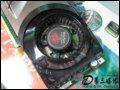 [大图5]丽台WinFast PX8800GTS TDH 320MB显卡