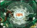 [大图6]七彩虹逸彩8500GT-GD2 CF黄金版256M显卡