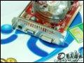 [大图8]七彩虹逸彩8600GT-GD3 UP烈焰战神 256M J10显卡