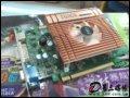 富彩 7300GT暴龙版(128M) 显卡