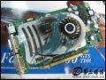 [大�D3]���_WinFast PX8600 GTS TDH�@卡
