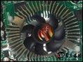 [大图1]翔升爵豹7300GT 256M GD3显卡