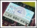 [大图3]威刚1GB DDR2 667(万紫千红)/笔记本内存
