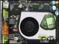 [大图4]讯景8600GT 512M(T84J-YDF)显卡