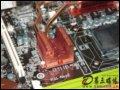 [大图8]微星阿修罗NX8500GT-TD256E静音版显卡