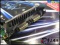 [大�D4]PNYGeForce 8800GTS-512MB�@卡