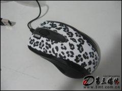姬蔻GOL-73S(奔放的旋律)鼠��