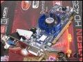 [大图2]蓝宝石HD4350 256M 白金版显卡