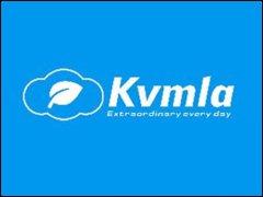 KVMLA 100G硬�P 香港VPS主�C